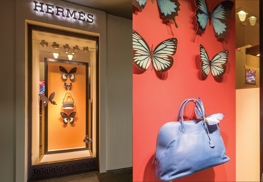 Butterfly window display dashing group - Visual merchandising head office jobs ...