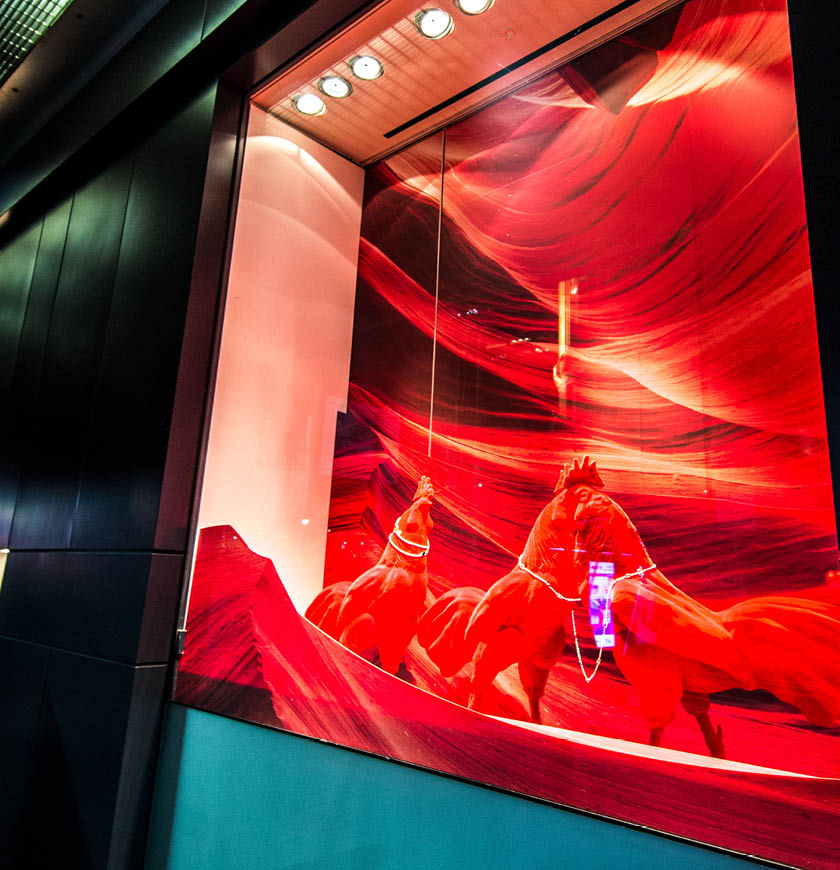 chinese new year window displays dashing group. Black Bedroom Furniture Sets. Home Design Ideas